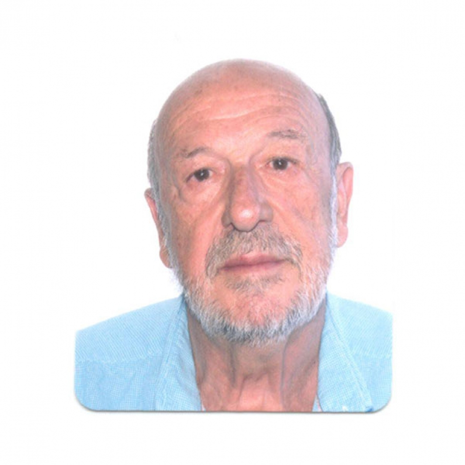Francisco Javier Laviña Gómez